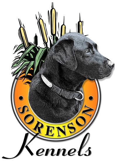 logo sorenson kennels web AuBYrl.tmp